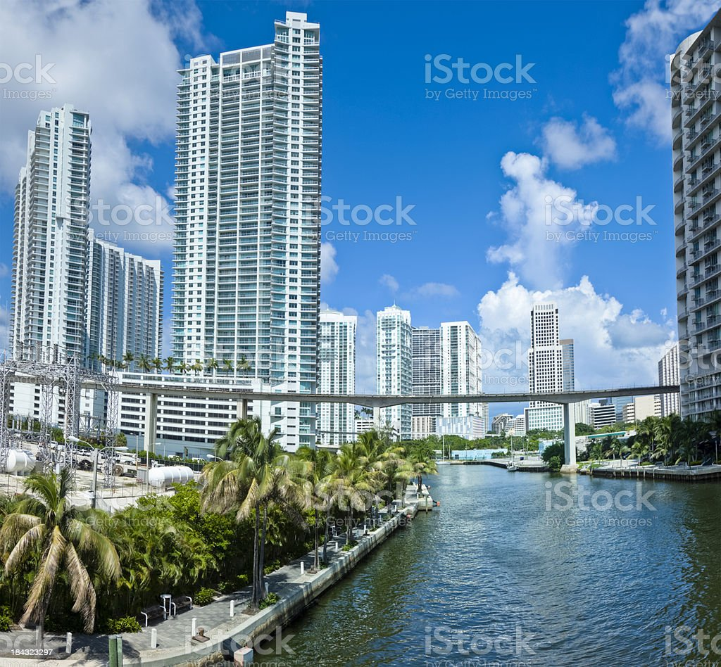 Miami River Cityscape With Condos Towering Above Palms royalty-free stock photo
