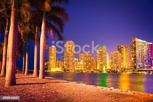 istock Miami Skyline Through Palm Trees 638949582