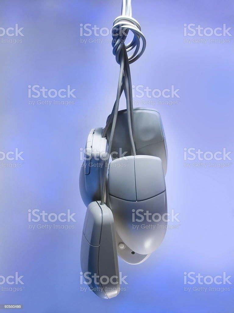 Mice stock photo