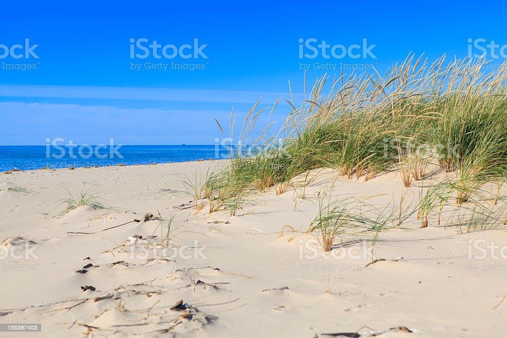 Michigan Lake shore stock photo