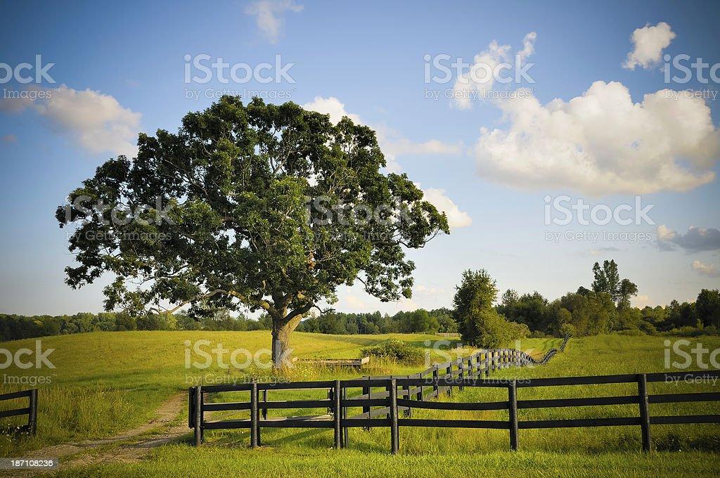 Michigan Landscape royalty-free stock photo