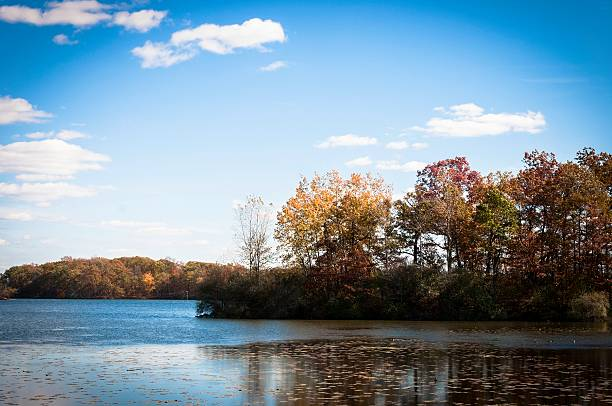 Michigan Landscape A lake at Kensington Metro Park outside of Ann Arbor in autumn. ann arbor stock pictures, royalty-free photos & images