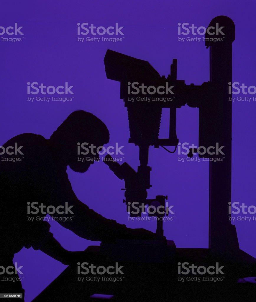 Micro fotografia foto stock royalty-free