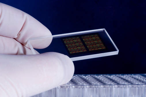 Dna Microarray Chips Stock Photo - Download Image Now