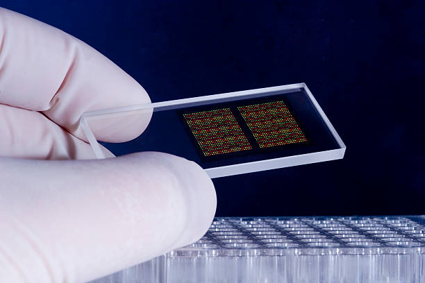 dna microarray chips - 納米科技 個照片及圖片檔