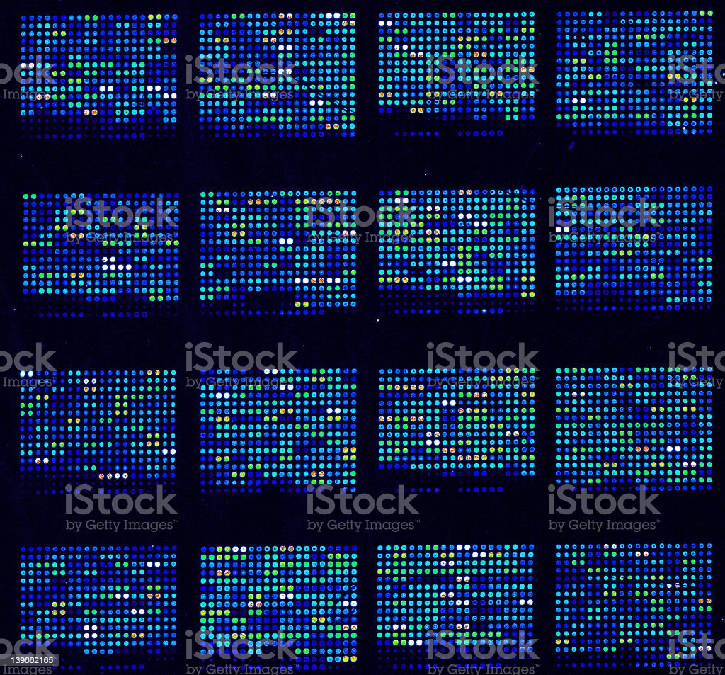 DNA microarrays stock photo
