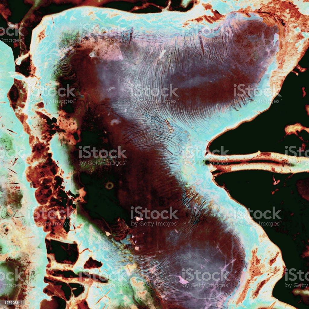 Microbe-Grunge Wallpaper royalty-free stock photo