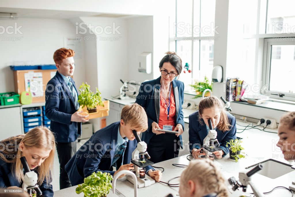 Microbiology Lesson stock photo