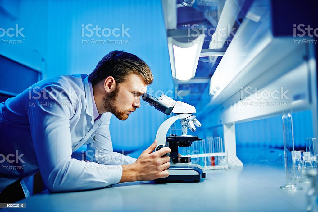Microbiology stock photo