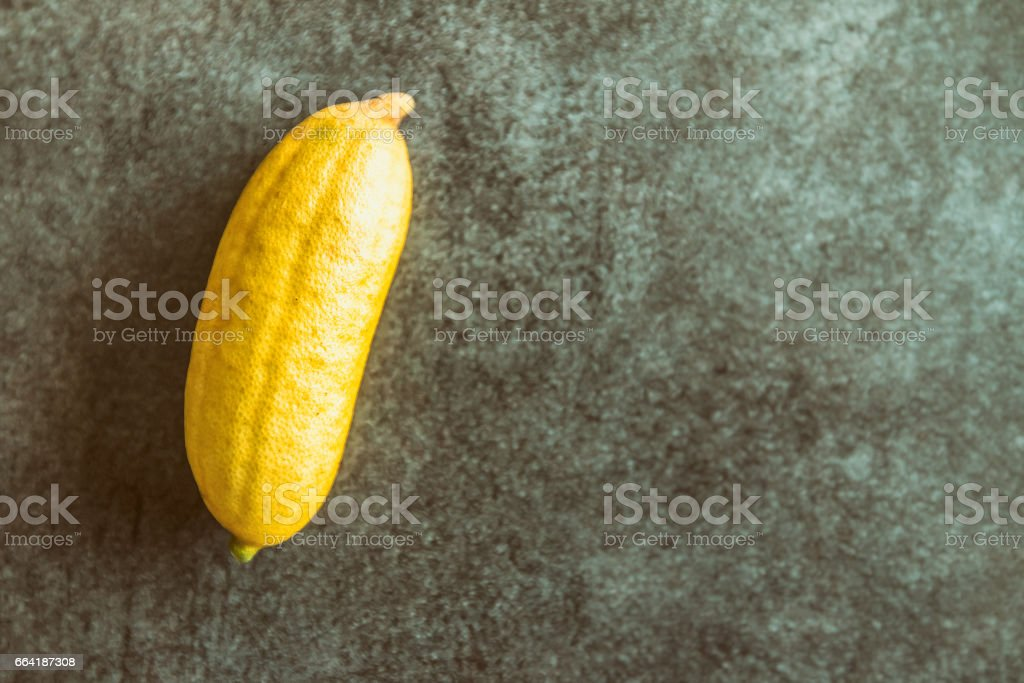 Microcitrus Australasica finger lime yellow rare citrus fruit also called lemon caviar placed on gray textured kitchen island stock photo