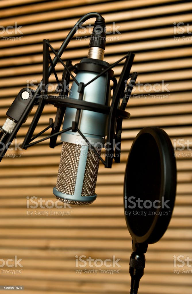 A microphone for professionals with wind shield in the studio room stock photo