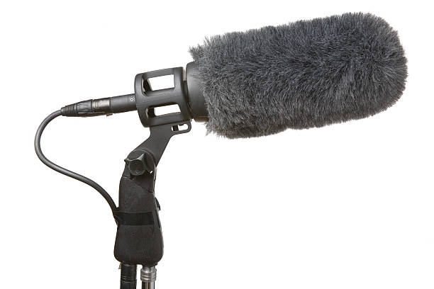 microphone - girafe photos et images de collection