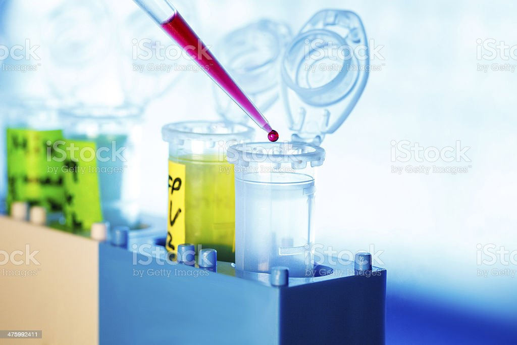 micropipette royalty-free stock photo