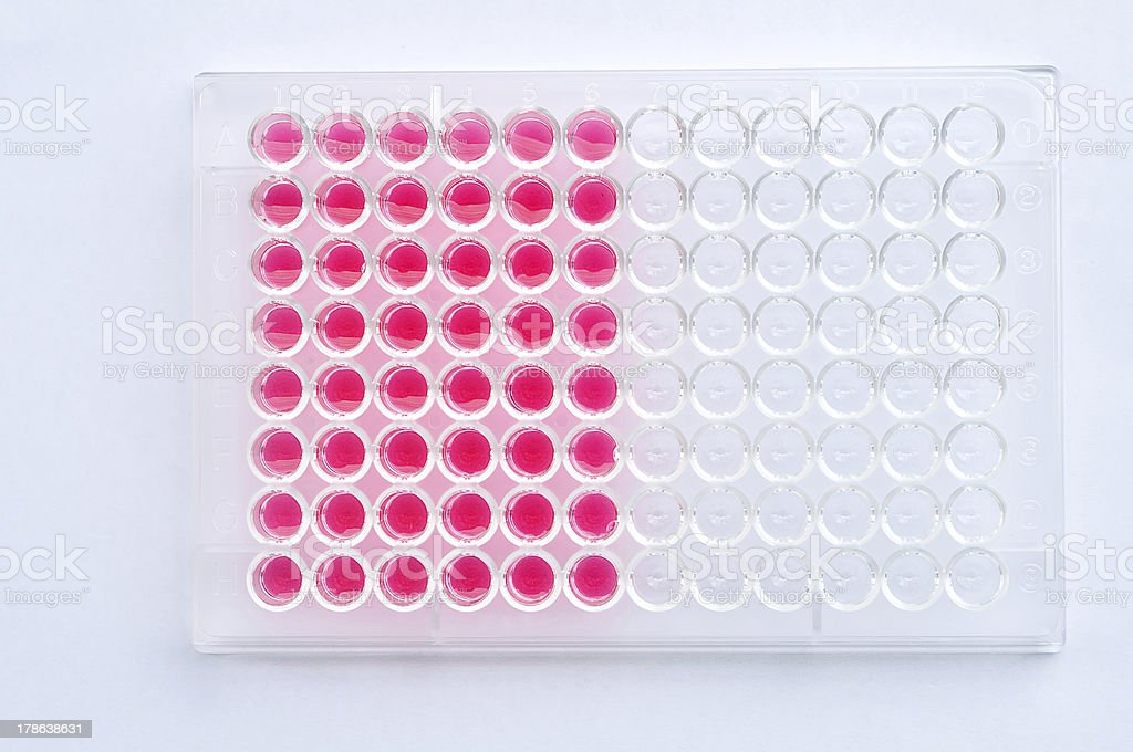 Microplate royalty-free stock photo