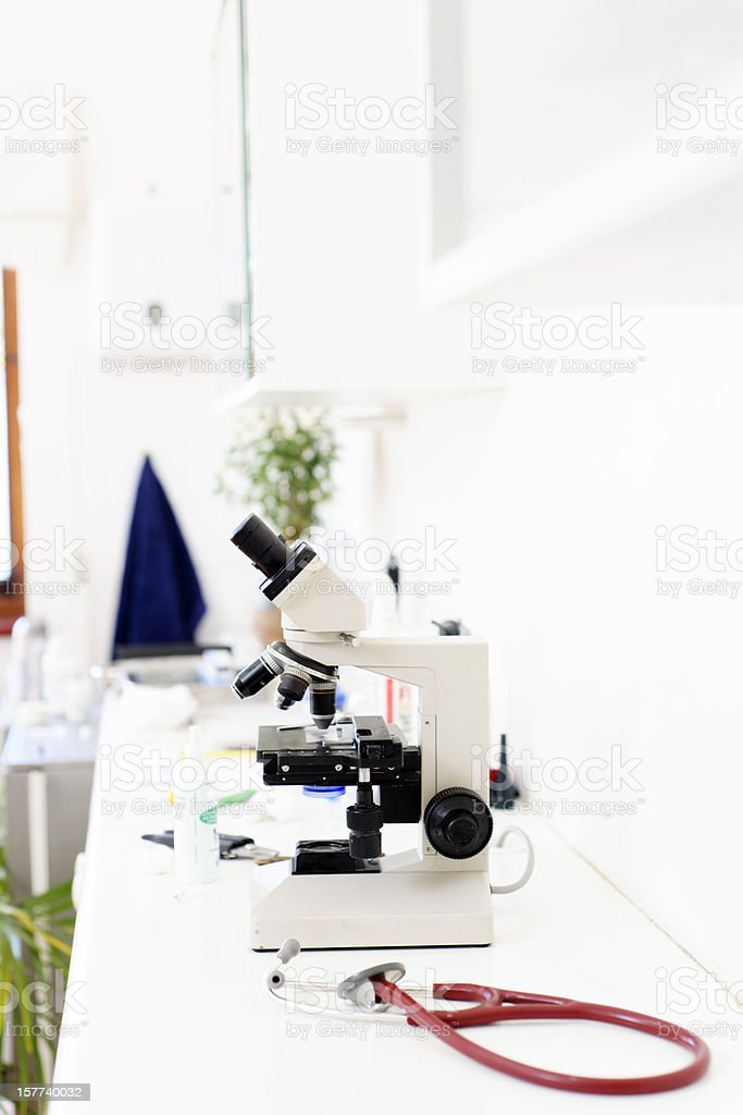 Microscope in vet surgery royalty-free stock photo