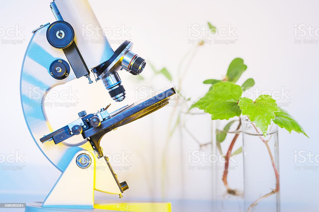 microscope on white background with light royalty-free stock photo