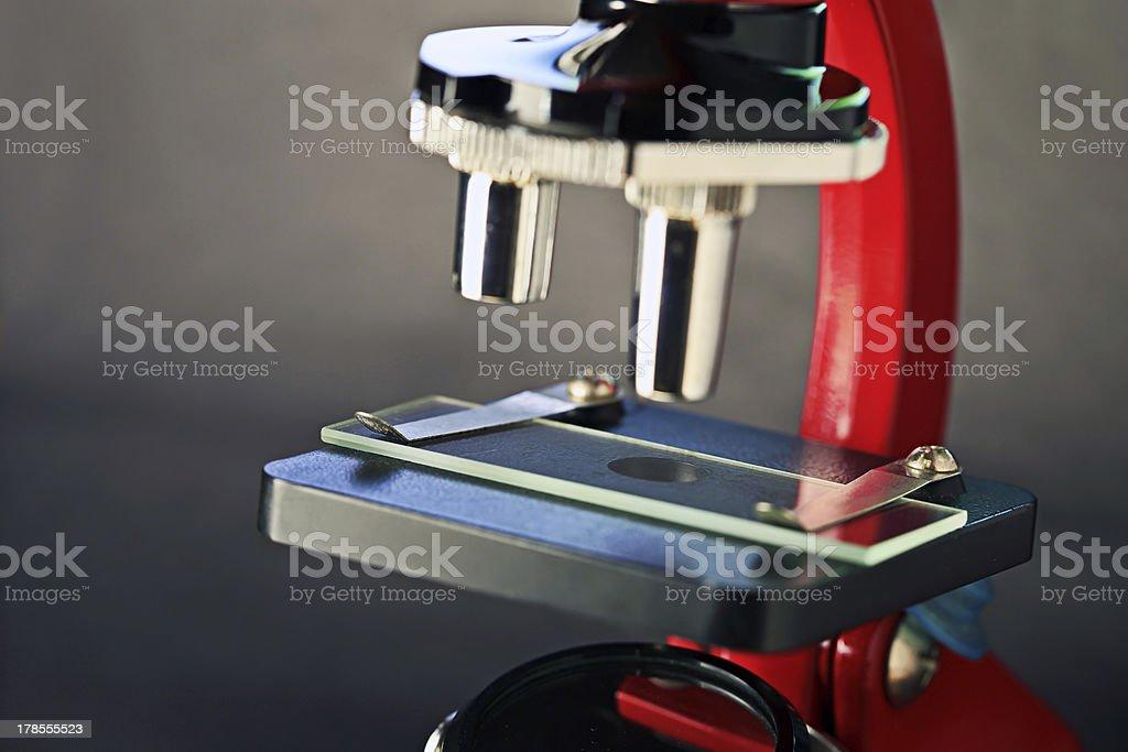 Microscope. royalty-free stock photo