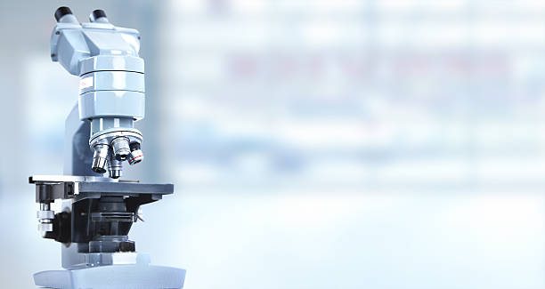 microscope. - microscope stock photos and pictures