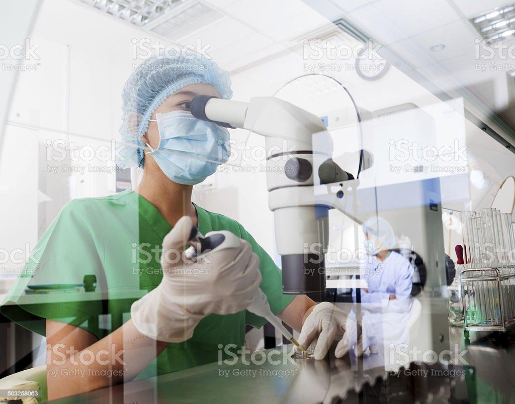 Microscope - Royalty-free Adult Stock Photo