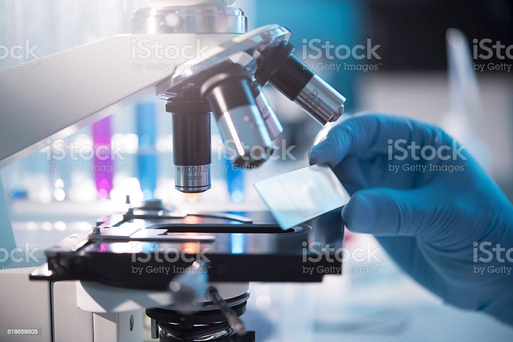 Royalty Free Pathology Lab Pictures, Images and Stock ...