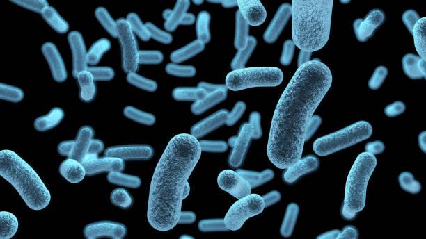 mikroskopisch blaue bakterien hintergrund - bakterie stock-fotos und bilder