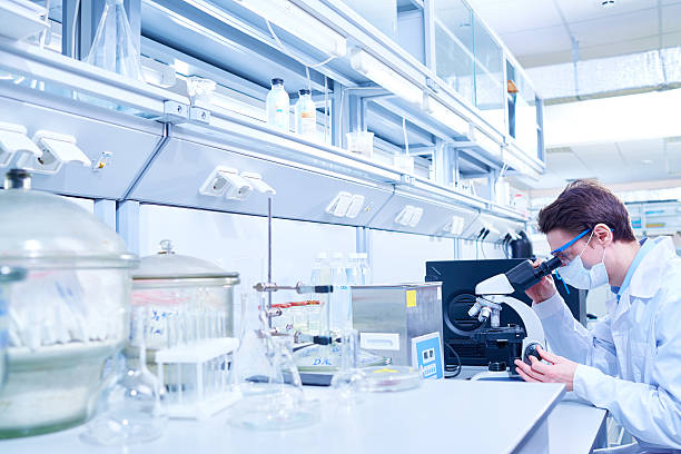 Microscopic examination Young scientist examining sample with microscope in modern laboratory microbiologist stock pictures, royalty-free photos & images