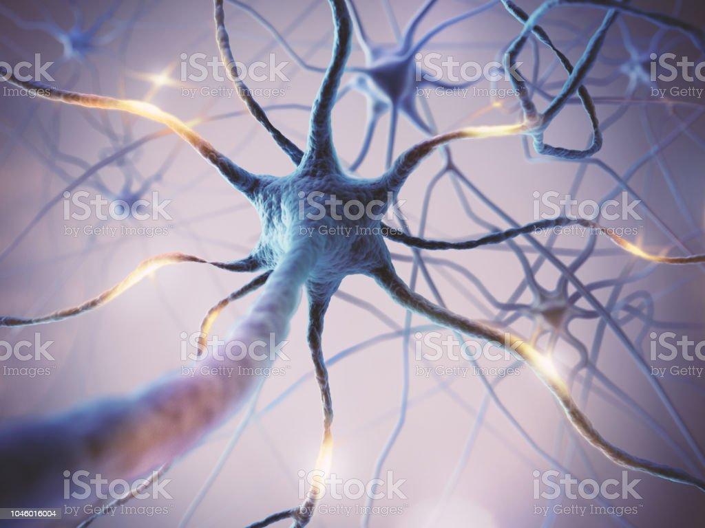 Mikroskopische des neuronalen Netzes Gehirnzellen. - Lizenzfrei Anatomie Stock-Foto