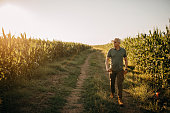 istock Mid adult farmer inspects his land 1264516971