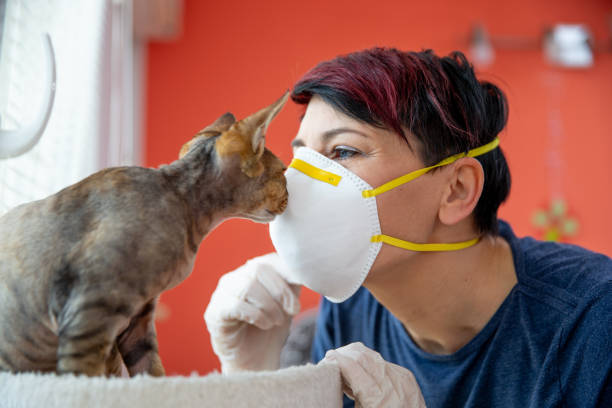 Mid adult female pet owner kissing her cat with protective mask picture id1217964939?b=1&k=6&m=1217964939&s=612x612&w=0&h=trnmlyvv ce4 07ahni955gh8m5nysamr8io8alrnag=