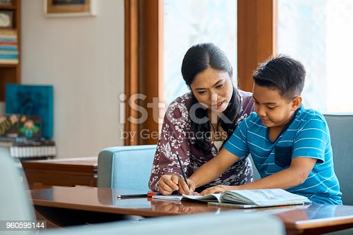 istock Mid adult woman assisting son in studying at home 960595144