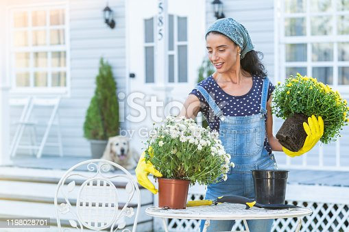 Mid adult woman planting flowers in front of a porch