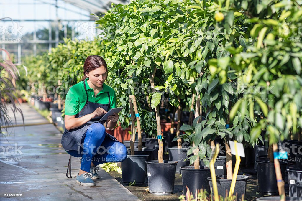 Mid adult woman working at garden center with digital tablet stock photo