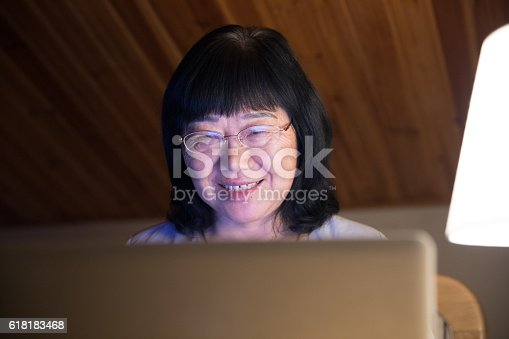1074745976 istock photo Mid age woman working at home on laptop close-up 618183468