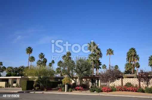 Mid 20th Century modern homes with xeriscaped simple landscaping.  Example of drought resistant and water conservation.  Cactus,shrubs and Bougainvillea. Palm trees in background.