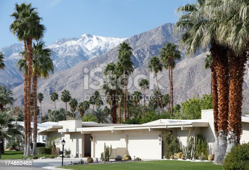 Palm Trees and Snow on the mountains is a rare and beautiful sight.  Homes representing Mid Century architecture.  Xeriscaped landscaping. Arid tropical climate.