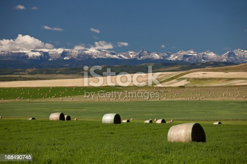 A beautiful scenic of Alberta. Foothills and hay bales near Okotoks. Southern Alberta landscape. Rocky Mountains in the distance. Themes in the image include agriculture, farming, ranching, alberta, landscape, nature, scenic, high river, rolling, hay, alfalfa, growing, organic, and southern alberta. Nobody is in the image.