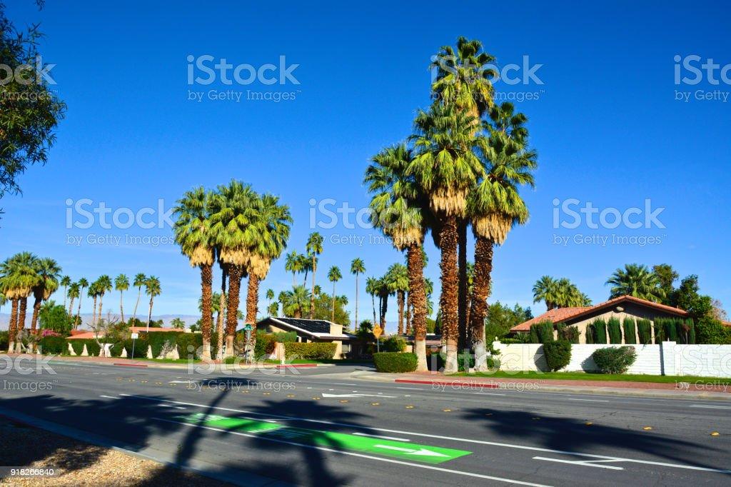 Attraktiv Mitte Des Jahrhunderts Moderne Häuser, Bäume Palm Straßenbild In Palm  Springs, Kalifornien, Vereinigte