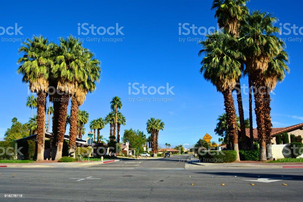 Elegant Mitte Des Jahrhunderts Moderne Häuser, Bäume Palm Straßenbild In Palm  Springs, Kalifornien, Vereinigte