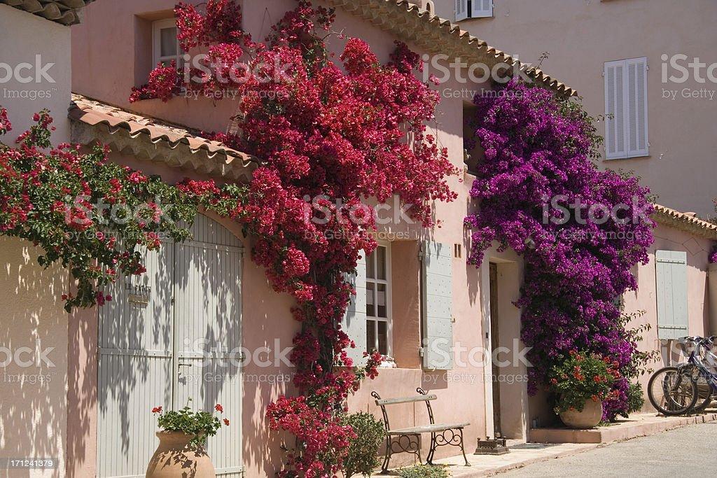 Midday Sun in Porquerolles stock photo