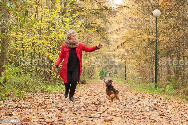 Middle aged lady is playing with her dog picture id479038039?b=1&k=6&m=479038039&s=612x612&h=zaxv4 adsfwqql1iswoxlmxe2zvc piicrg2lv6xzqw=