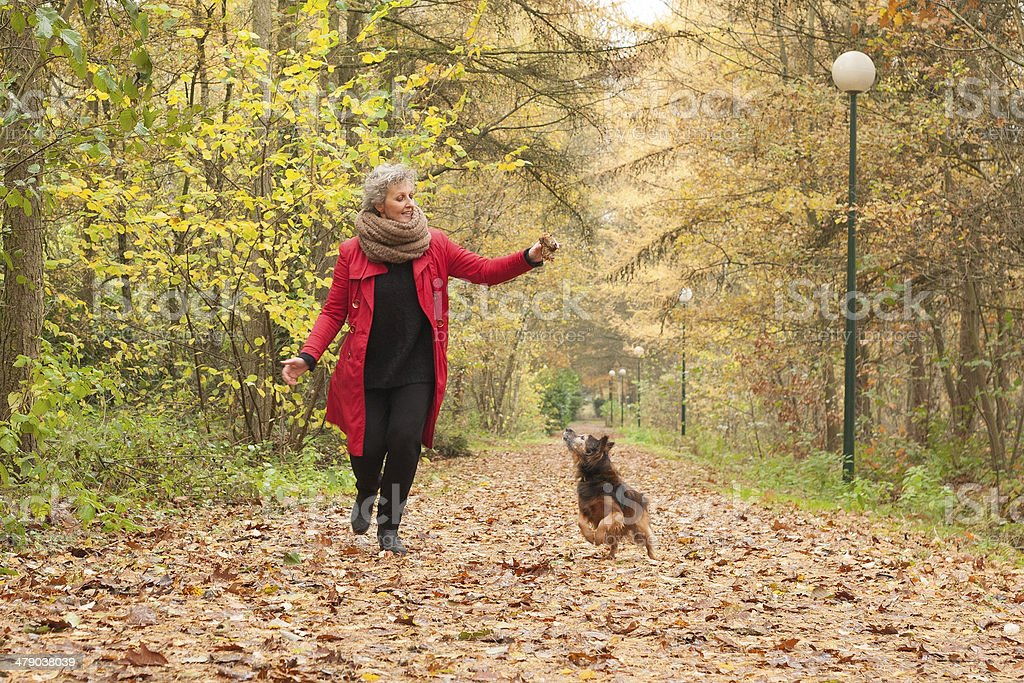Middle aged lady is playing with her dog stock photo
