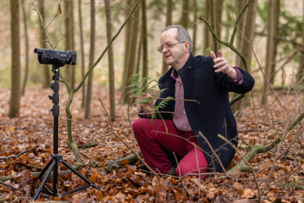 Middle aged man in forest vlogging about nature, ferns and environmental conservation for youtube or social media educational channels stock photo