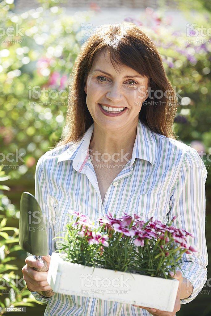 Medio de mujer Plantando flores en el jardín foto de stock libre de derechos