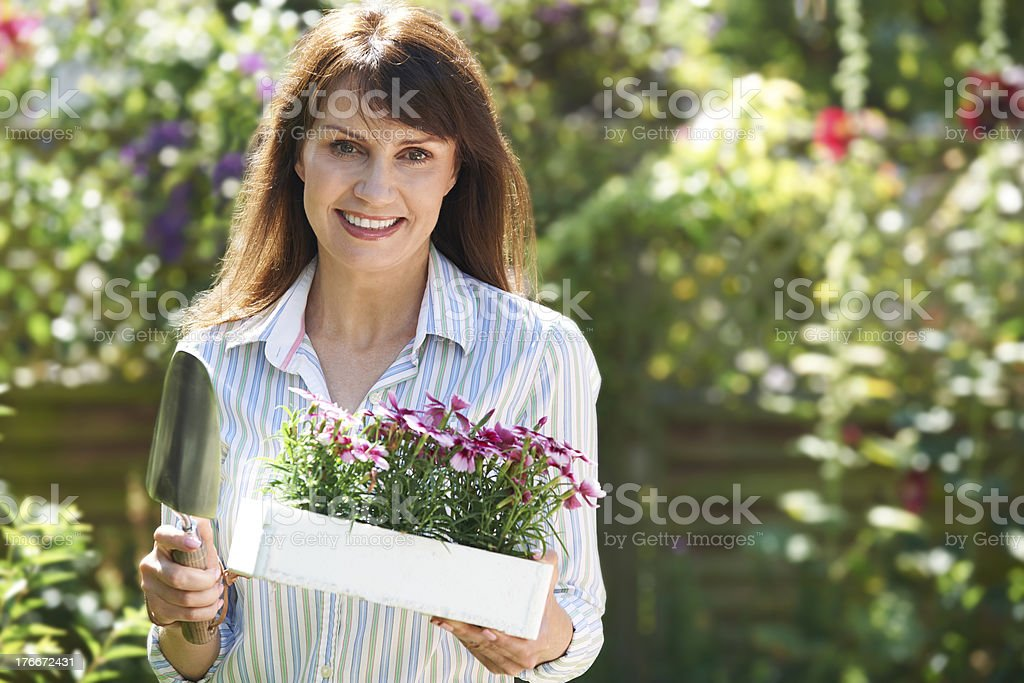 Middle Aged Woman Planting Flowers In Garden royalty-free stock photo