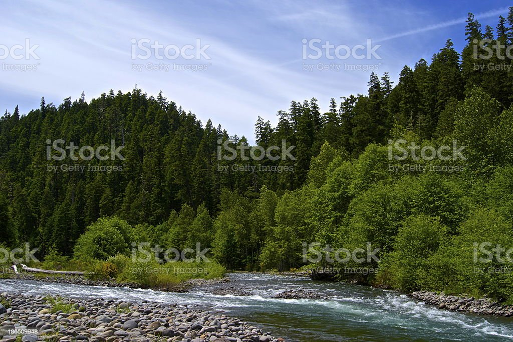 Middle Fork Willamette River royalty-free stock photo