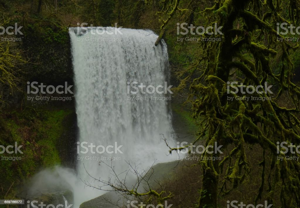 Middle North Falls Moss stock photo