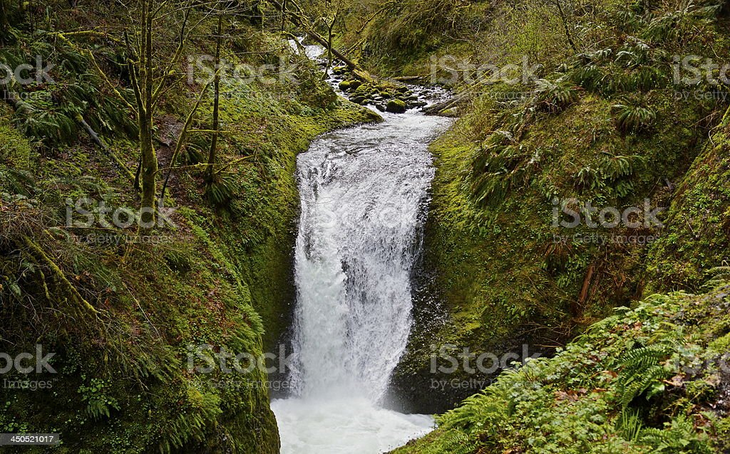 Middle Oneonta Falls stock photo