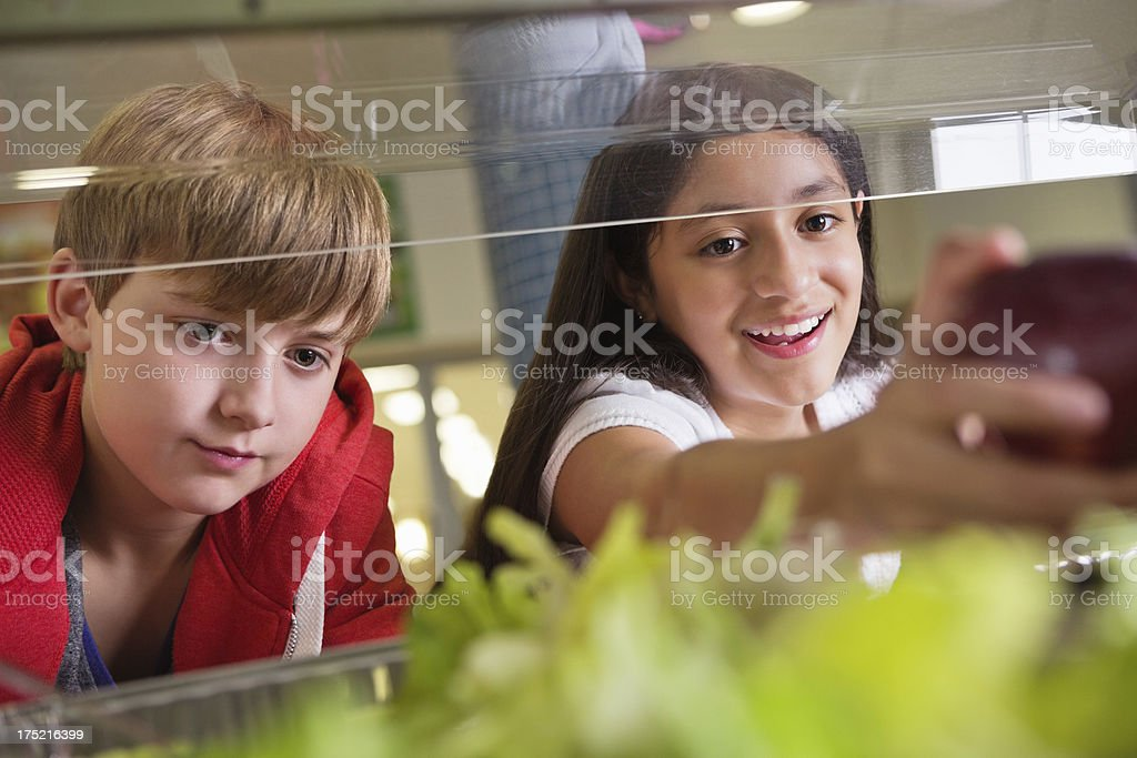 Middle school students choosing healthy food in lunch line royalty-free stock photo