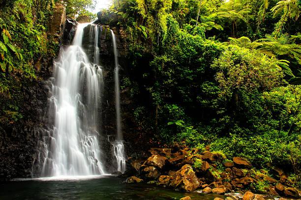 middle tavoro waterfalls in bouma national heritage park, taveun - fiji stock photos and pictures