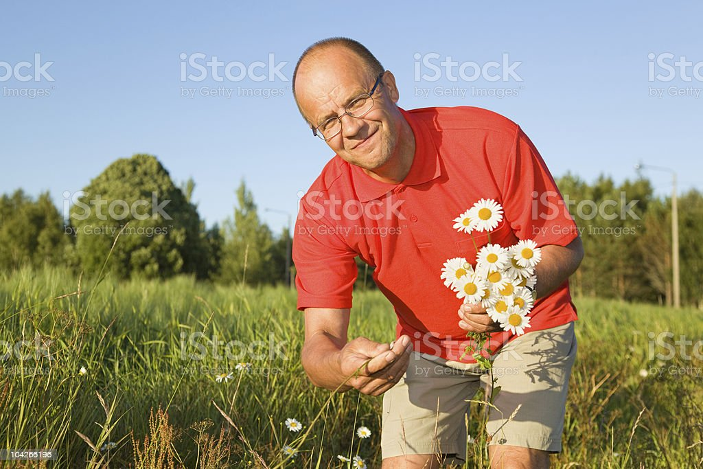 Middle-aged man picking up flowers royalty-free stock photo